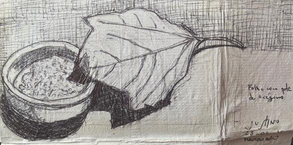 Folha e pote de orégano- Montevidéu, Justino, caneta em guardanapo, 2016.