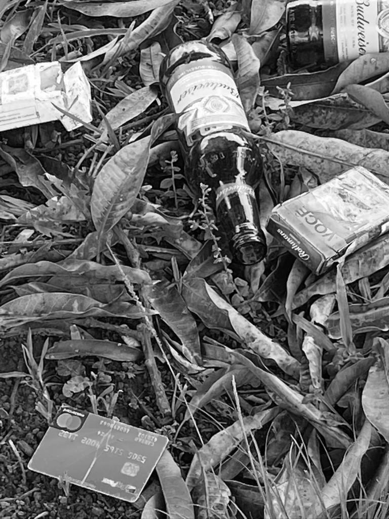 """Natureza morta 2"", Justino, fotografia digital, 2020."